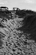 Wooden Platform Metal Prints - Pathway Through the Dunes Metal Print by Luke Moore