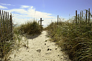 Panama City Beach Posters - Pathways Poster by Elbe Photography