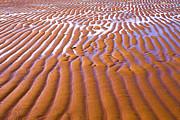 Patterns In The Sand Print by Diane Diederich