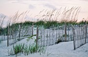 Beach Fence Digital Art Posters - Pawleys Island Sand Dunes Poster by Paulette  Thomas