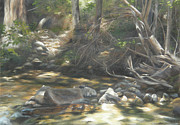 Riverbed Paintings - Peace at Darby by Lori Brackett