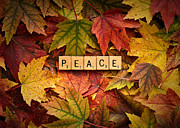 Daniel Posters - PEACE-Autumn Poster by  Onyonet  Photo Studios