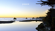 Daniel Furon Metal Prints - Peace Metal Print by Daniel Furon