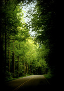 Smokey Mountain Drive Photo Posters - Peace Found Within Poster by Karen Wiles