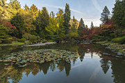 Japanese Garden Posters - Peace in the Fall Garden Poster by Mike Reid