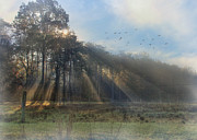 Foggy Morning Digital Art - Peace in the Valley by Lori Deiter