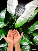 Absorb Originals - Peace Lily For The Consciousness by Paulo Zerbato
