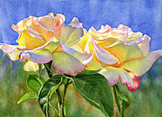 Realistic Art - Peace Roses with Blue Background by Sharon Freeman
