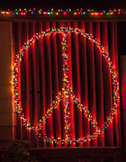 Night Time Lights Posters - Peace Sign Christmas Lights Poster by Garry Gay
