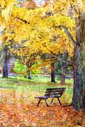 Peaceful Autumn Print by Darren Fisher
