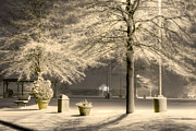 Snowy Night Night Photo Prints - Peaceful Blizzard Print by JC Findley