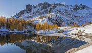 """autumn Reflection"" Photos - Peaceful Fall Larches by Mike Reid"