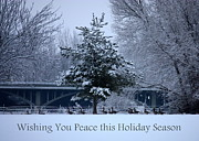 Winter Landscapes Metal Prints - Peaceful Holiday Card - Winter Landscape Metal Print by Carol Groenen