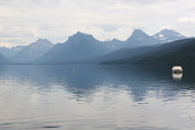Calm Waters Posters - Peaceful Lake McDonald Poster by Carol Groenen