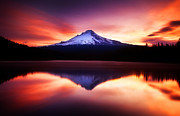 Mount Hood Oregon Posters - Peaceful Morning on the Lake Poster by Darren  White