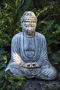 Buddhism Art - Peacefulness by Garry Gay