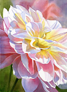Close Up Floral Painting Prints - Peach and Yellow Dahlia Print by Sharon Freeman