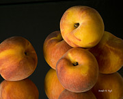 Peaches Photo Prints - Peach Reflections I Print by Jennifer Kay Fogle