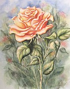 Peach Originals - Peach Rose by Conni  Reinecke