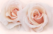 Peach Rose Prints - Peach Roses from the Garden Print by Jennie Marie Schell