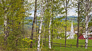 Vermont Towns Prints - Peacham Vermont Spring Print by Alan L Graham