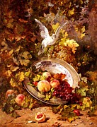 Still-life With Peaches Prints - Peaches and Grapes With A Dove - Bourland - 1875 Print by Antoine Bourland