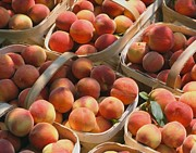Peaches Photo Originals - Peaches of Bundle by Janet Moss
