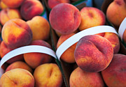 Peaches Photo Prints - Peachy Keen Print by Mary  Smyth