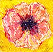 Regina Valluzzi - Peachy poppy miniature 2 by 2 inch painting