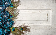 Crackle-pattern Framed Prints - Peacock feathers and flowers on vintage door Framed Print by Jennifer Huls