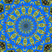 Rose Santuci-sofranko Posters - Peacock Feathers Kaleidoscope 8 Poster by Rose Santuci-Sofranko