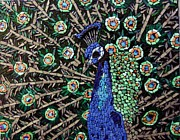 Peacock Glass Art Metal Prints - Peacock Metal Print by Monique Sarfity