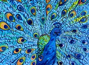 Purple Art - Peacock on Blue by Eloise Schneider