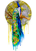 Peacock Mixed Media Prints - Peacock Print by Slaveika Aladjova