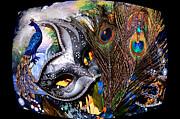 Cindy Nunn - Peacock through a Fish Eye