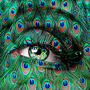Brown Eyes Digital Art Framed Prints - Peacock Framed Print by Yosi Cupano