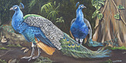 Vines Paintings - Peacocks In The Garden by Phyllis Beiser