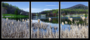 Abbott  Photos - Peaks of Otter Lodge Triptych by Steve Hurt