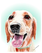 Animal Shelter Drawings - Peanut a former shelter sweetie by Dave Anderson