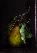 Pear Art Framed Prints - Pear In The Cupboard Framed Print by Constance Fein Harding