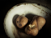 Ceramic Metal Prints - Pear Love Metal Print by Amy Weiss
