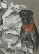 Black Lab Mixed Media - Pearl ASPCA Dog of the Year by Cori Solomon