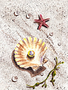 Seashell Fine Art Painting Prints - Pearl In The Seashell Sea Star And The Water Drops Print by Irina Sztukowski