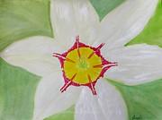Pearl White Flower Print by Sonali Gangane