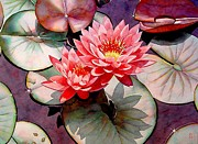 Waterlily Painting Metal Prints - Pearls Of The Pond Metal Print by Robert Hooper