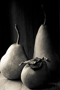 Charcoal Photos - Pears In Charcoal 2 by Constance Fein Harding