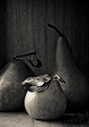 Charcoal Photos - Pears In Charcoal by Constance Fein Harding
