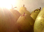Lucy D Photo Metal Prints - Pears Metal Print by Lucy D