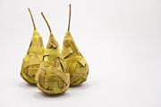 Terry L Ellis Prints - Pears of Reeds Print by Terry Ellis