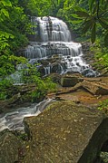 Saluda Photos - Pearson Falls  Saluda NC by Willie Harper
